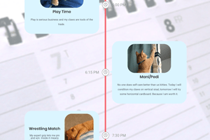 A zoomed out view of a cat's daily schedule, with items including play time, manicure, and wrestling.