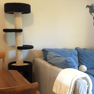 A tall cat tree is next to a comfortable couch.